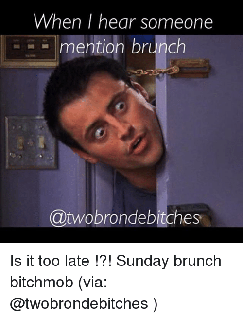 when-i-hear-someone-mention-brunch-twobrondebitches-is-it-too-2303269